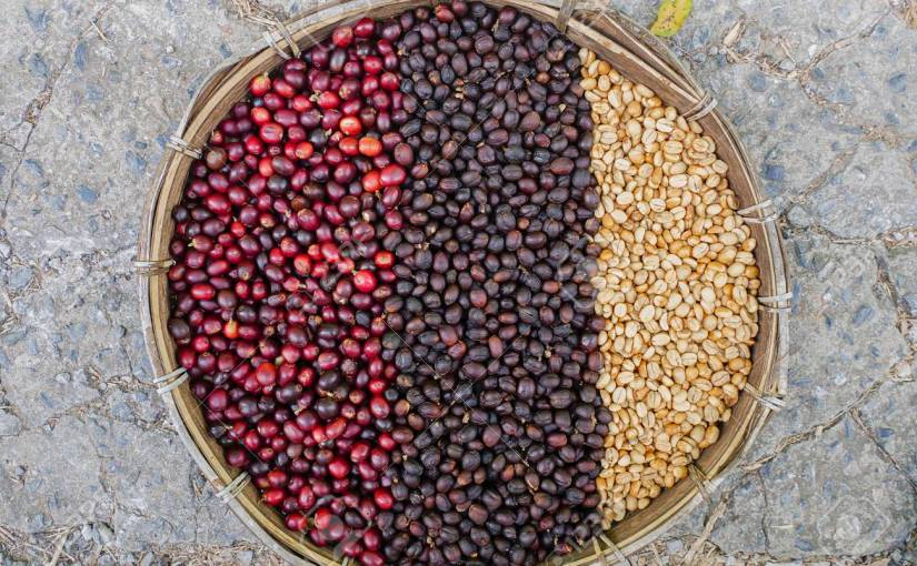 Coffee prices have been stuck below the cost of production for the longest stretch since the global financial crisis, leading some producers to abandon crops and some to migrate for newjobs