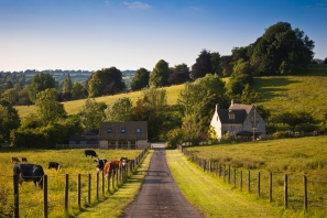Farmland with farmhouse and grazing cows in the UK
